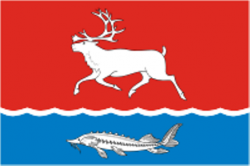 b_250__16777215_00_images_news_26.03.2015_Караул_Носок_Flag_of_Ust-Eniseisky_rayon_Taimyria.png